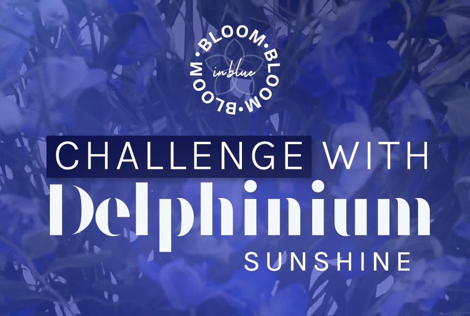 'Bloom in Blue' challenge con Delphinium Sunshine